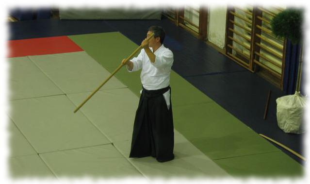 aikido_return